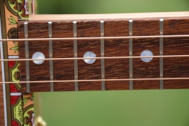 White pearloid fret dots